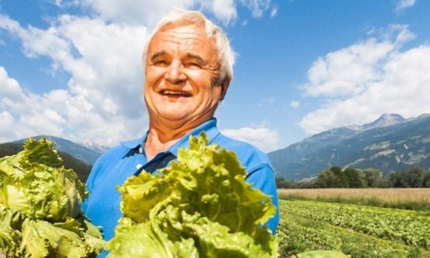 Sinnstiftend: Regionale Lebensmittel