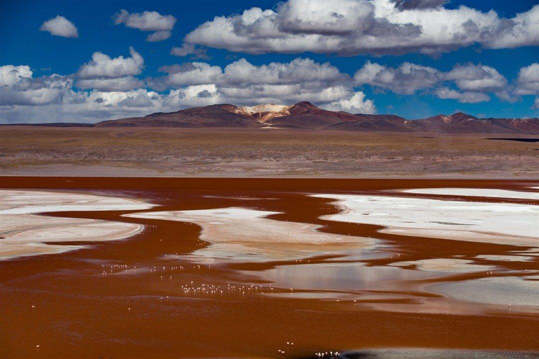 laguna-colorada-1300-x-867